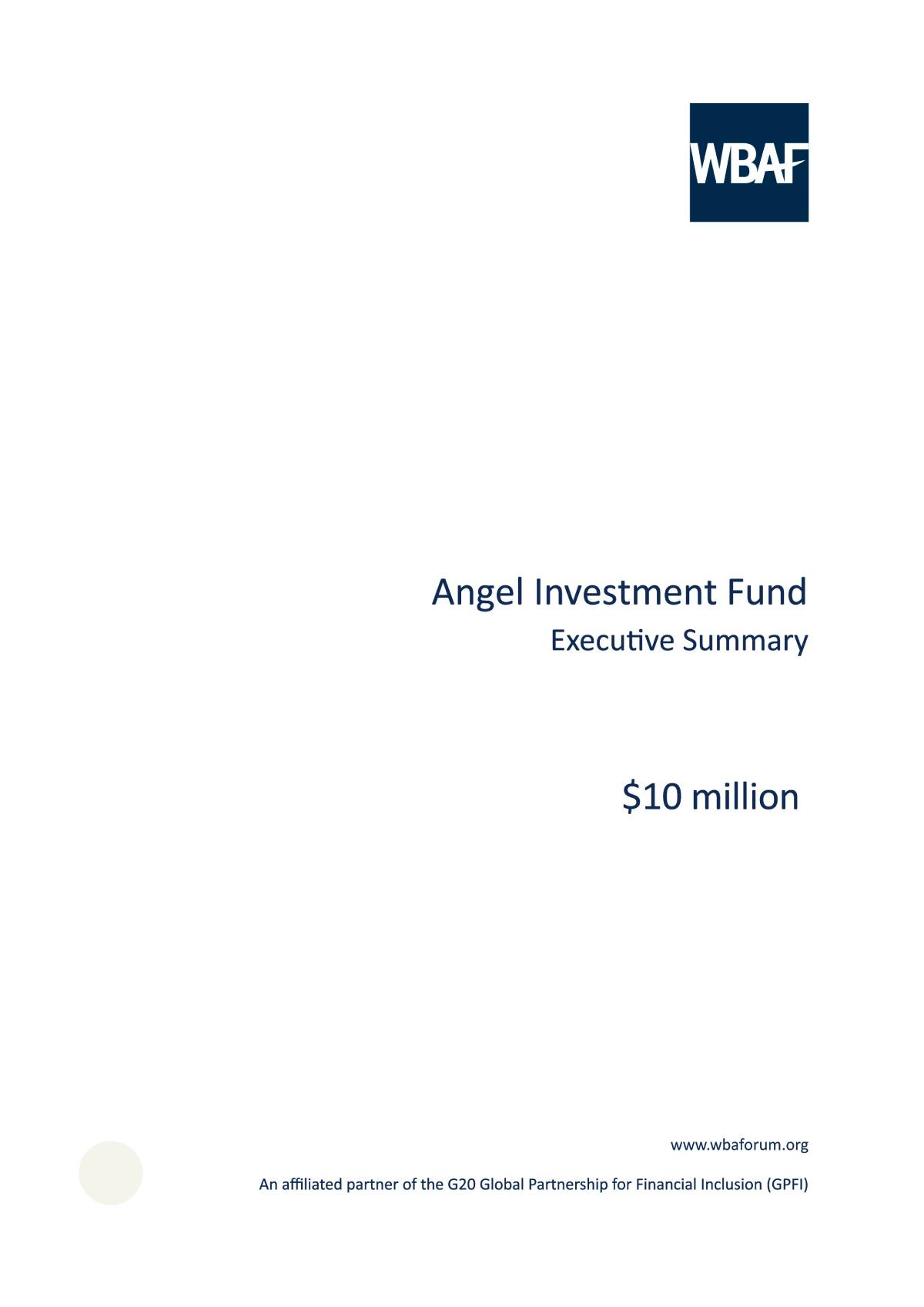 Angel Investment Fund - Executive Summary